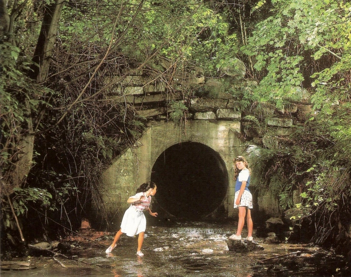 """The Drain"" by Jeff Wall, 1989."